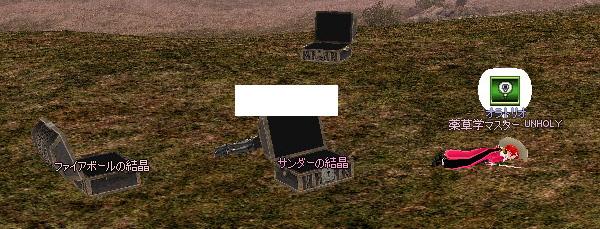 mabinogi_2008_12_31_012.jpg