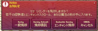 mabinogi_2009_01_15_001.jpg