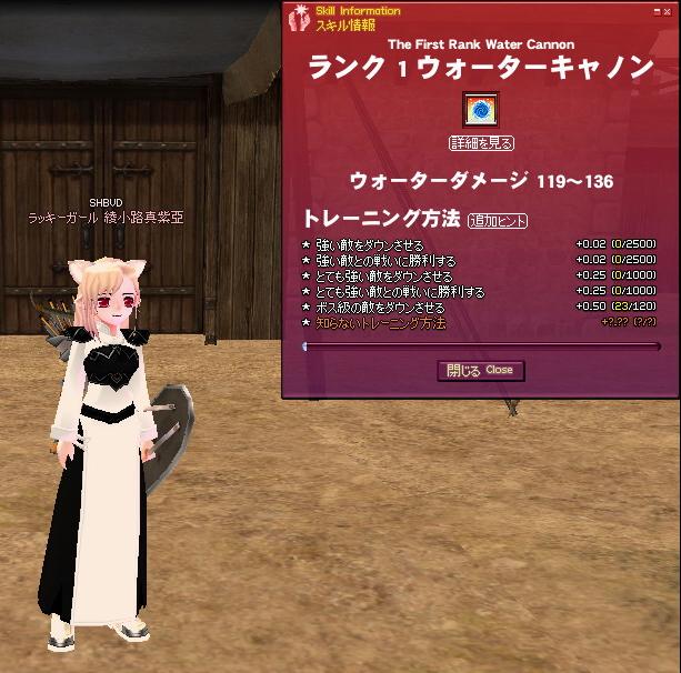 mabinogi_2009_01_17_003.jpg